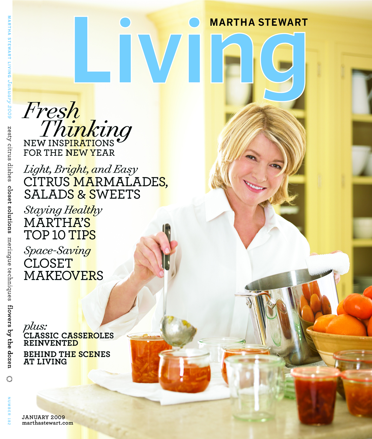 marthaStewartLiving2009jan_x